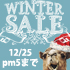 2017 WINTER SALE