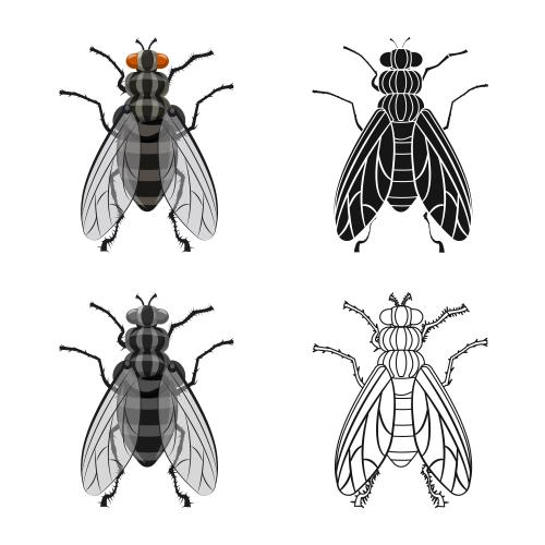 虫への対応にジェンダーはあるか?