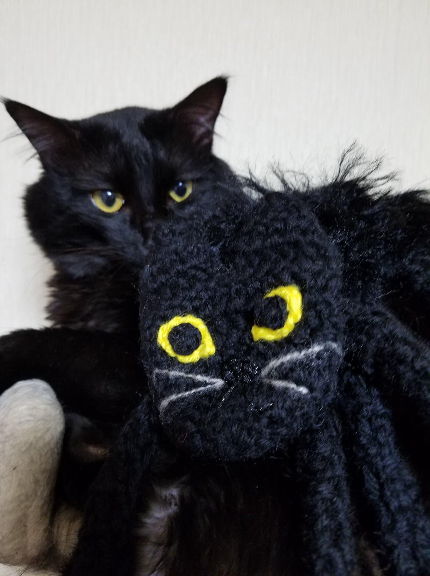 おかんとコピ Vol.16 黒猫のマフラー