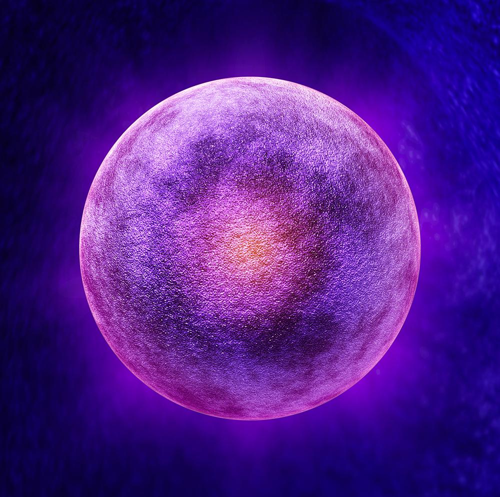モテ実践録(22)一つの卵子を凍結できました。